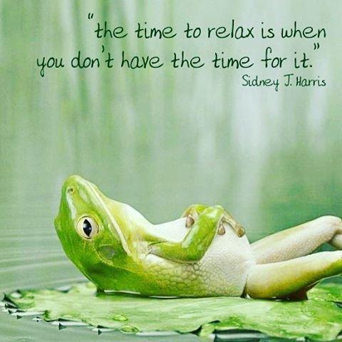 Happy Sunday everybody sunday sundayfunday relaxtime inspirationalquotes